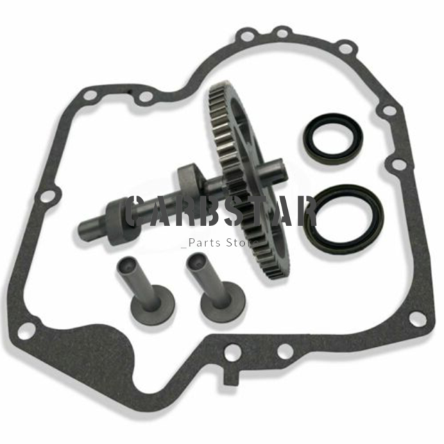 Engine Camshaft Gasket Kit Replacement for Briggs /& Stratton 793880 793583 792681 791942 795102 697110