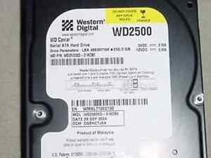 Western Digital WD2500SD 250GB 7200RPM 8MB SATA Hard Drive
