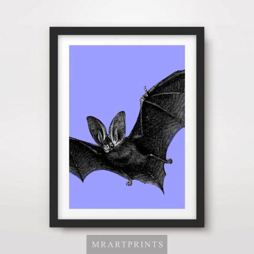 BAT ART PRINT POSTER Animals Colourful Colorful Pop Bright Decor Illustration