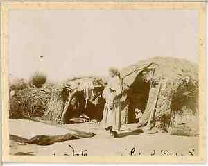 A-Demeure-Tunisie-Environs-de-Sousse-Vintage-citrate-print-Vintage-Tunisia