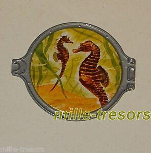 Image Hublot 10 : Hippocampe - Vitho - Les Merveilles Sous-marines Acheter Un En Obtenir Un Gratuitement