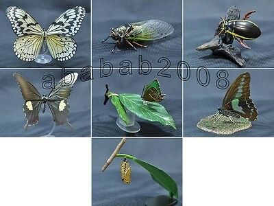 Yujin the insects Figure Part.4 gashapon (full set of 7 figures with secret)