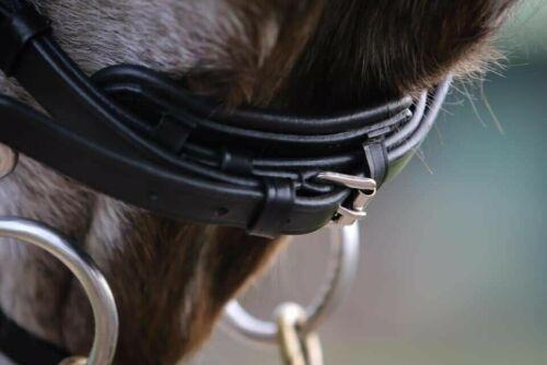 Curve Crank Noseband Details about  /Adams-Tack Mega Bling Patent Leather Horse Bridle