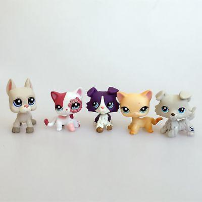 5 Lot Authentic Hasbro Littlest Pet Shop LPS Collie Short Hair Cat Great Dane