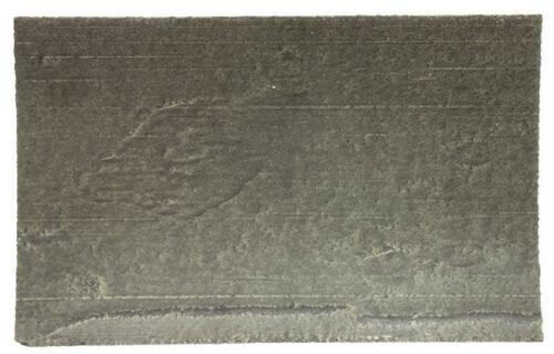 Bitume chaque Beetle Sound annelage Pads 30x20cm 211898005