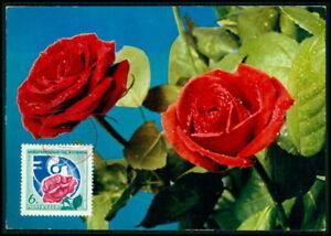 Russia Mk 1975 Flore Roses Rose Roses Maximum Carte Carte Maximum Card Mc H3684