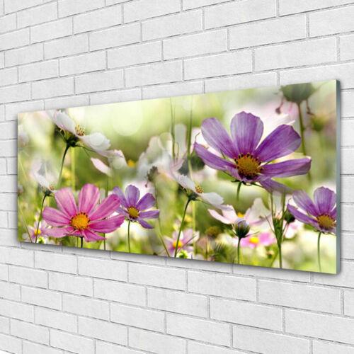 Wandbilder Glasbilder Druck auf Glas 125x50 Blumen Natur