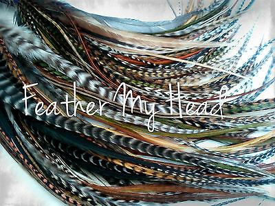10 Pc Ginger  Grizzly//Solid Feather Hair Extension 11-14 In Long 28-36cm