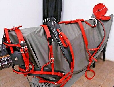 NYLON DRIVING HARNESS FOR SINGLE HORSE IN RED//BLACK with diamonte browbnd bridle