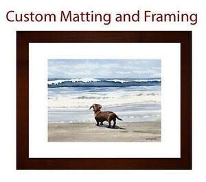 Custom Framing Djr Brown Wood Frame With White Mat Ebay