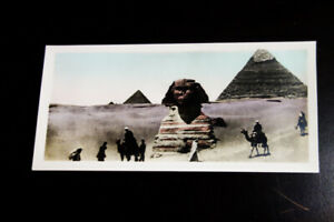 Egypt-Cairo-Set-15-Picture-Post-Card-20-pristine-mint-Cards
