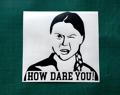 Greta Thunberg Window Decal Vinyl Bumper Sticker 5