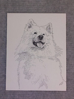 Packof4 Samoyed Puppy Dog Puppies Dogs Stationery Greeting Notecards Envelopes