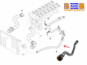 bmw e46 lower return radiator coolant water hose 320i. Black Bedroom Furniture Sets. Home Design Ideas