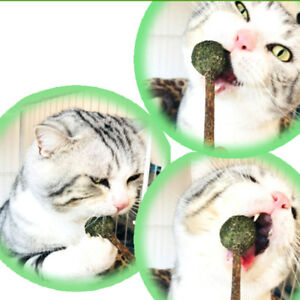 Health-Cat-Mint-Ball-Toys-Coated-Catnip-Pet-Kitten-Gasping-Play-Game-Toy-Z-VCG