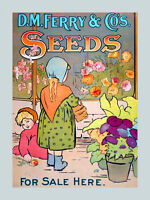 Children Vase Of Flowers Garden Seeds American Usa Poster Repro Free Sh