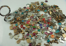 50PCS mix floating charm fit Origami owl glass memory locket accessories p1