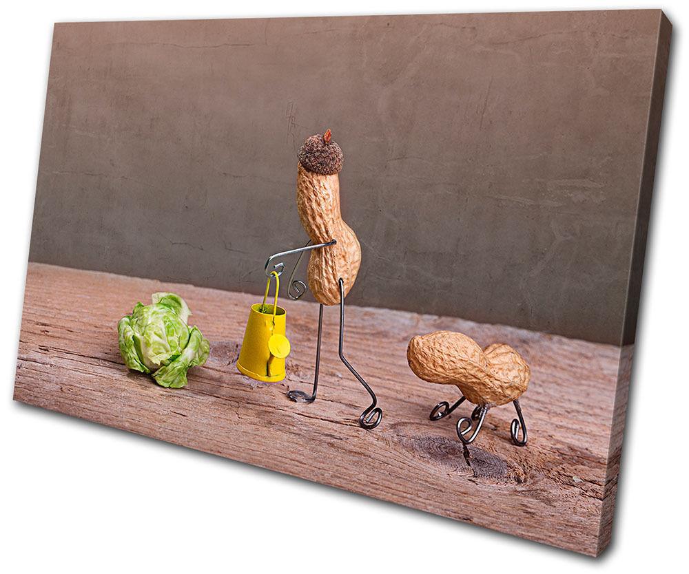Food Kitchen Peanut Peanut Peanut man Comedy  SINGLE TELA parete arte foto stampa 508150