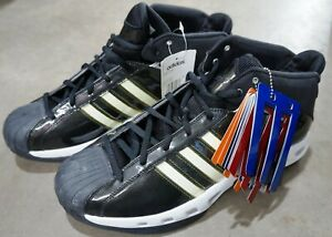 TEAM COLORS BASKETBALL SHOES