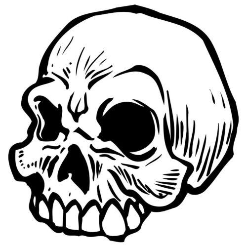 Crânes fer sur les transferts A4 A5 A6