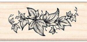 Art Stamps Ivy Border Black