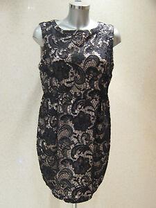 Tulip Size New 14 Dress Lace Uk Fearne Cotton Black Tags YxCqtggw