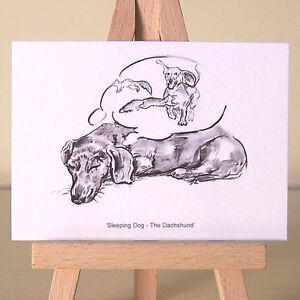 Dreaming-Dachshund-ACEO-art-card-sleeping-Doxie-charcoal-drawing