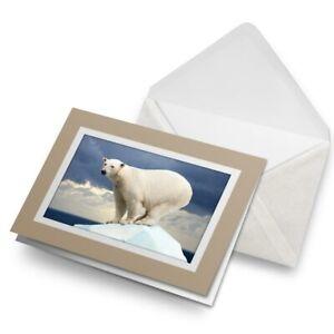 Greetings-Card-Biege-Beautiful-Polar-Bear-Ice-Animals-Wild-8586