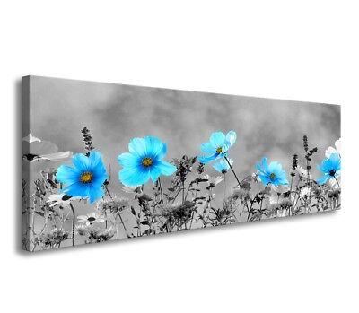 Bilder Leinwand auf Rahmen Gewürz Küche 4x 30x30 cm 6609/> MARKE VISARIO ! Bild