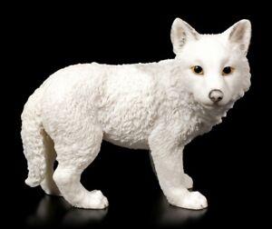 Bianco Lupo Figura Cucciolo In Piedi Veronese Wolfbaby Cane