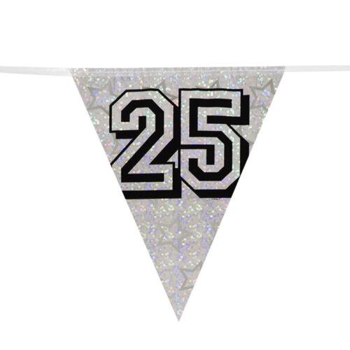 environ 7.92 m Argent 25 Holographique Drapeau Bunting 25th Anniversaire Ou Anniversaire 26 ft de long-Neuf