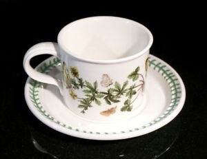Beautiful-Portmeirion-Botanic-Garden-Common-Tomentil-Large-Breakfast-Cup-And