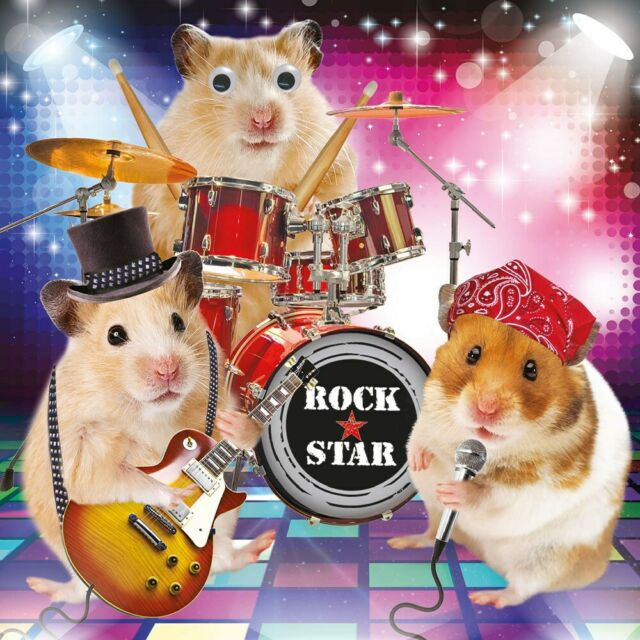 Hamster Birthday Card Rock Stars Hamster Jam 3D Goggly Eyes Funny Greeting Card