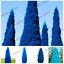 100 PCS Seeds Arborvitae Blue Cypress Conifer Bonsai Plants Home Garden 2019 New