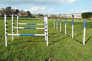Dog-Agility-Equipment-set-3-Maintenance-Free-Jumps-6-Weaves