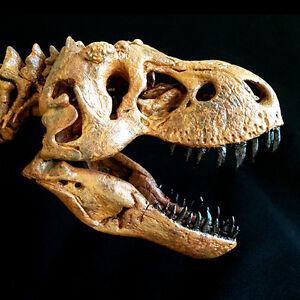 JTS-Tyrannosaurus-Rex-T-Rex-Komplett-Skelett-Kopie-Statue-Neu