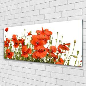 Acrylglasbilder Wandbilder Druck 125x50 Mohnblumen Pflanzen