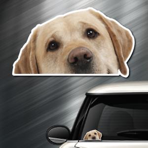 (1) Labrador Retriever DOG Peeper Sticker Window Peep Decal Car Auto Puppy lab