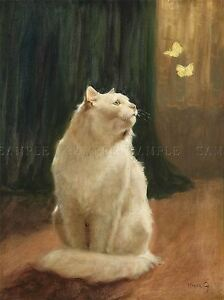 PAINTING-ANIMAL-HEYER-CAT-BRIMSTONE-BUTTERFLIES-ART-PRINT-POSTER-LAH437A