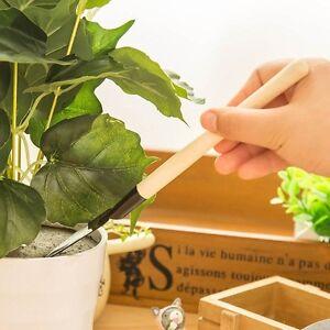 mini spaten schaufel rechen blumentopfpflanze sukkulenten. Black Bedroom Furniture Sets. Home Design Ideas