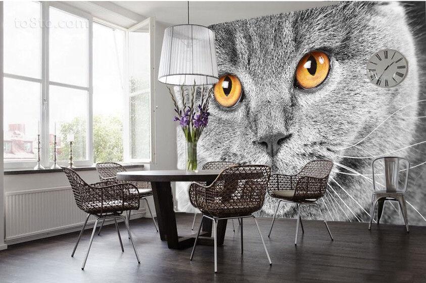 3D Schöne Graue Katze 8 Tapete Wandgemälde Tapete Tapeten Bild Familie DE Summer  | Zahlreiche In Vielfalt  | Langfristiger Ruf  | Am praktischsten