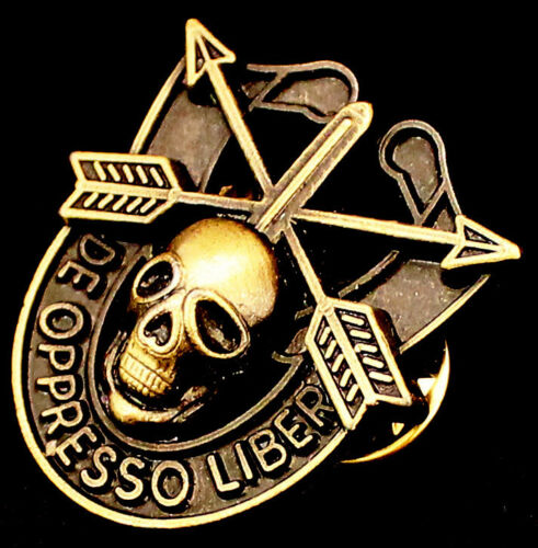 Special Forces Skull Crest DI Pin Uniform US Army SF Airborne SOG Insigna NEW