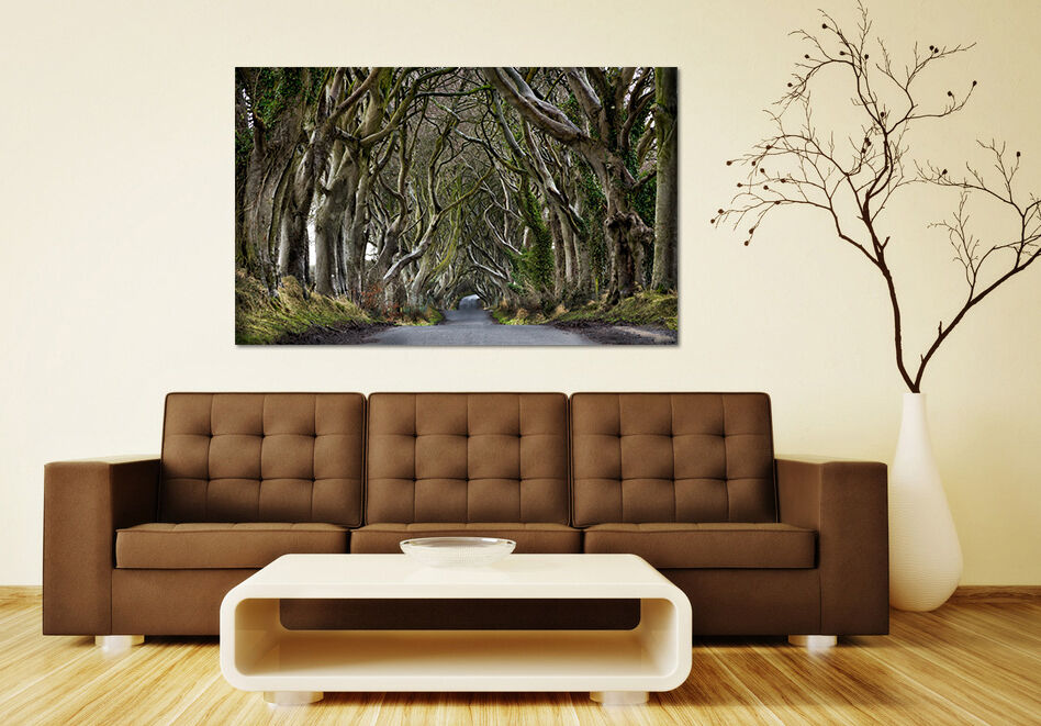 3D Der Wald 590 Fototapeten Wandbild BildTapete AJSTORE DE Lemon