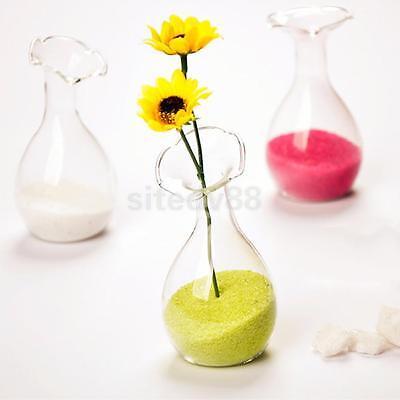 European Glass Flower Hydroponic Vase Bottle Terrarium Container Home Decor