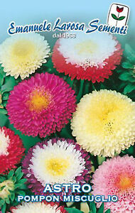 150-seeds-Seeds-Astro-pompoms-mixture