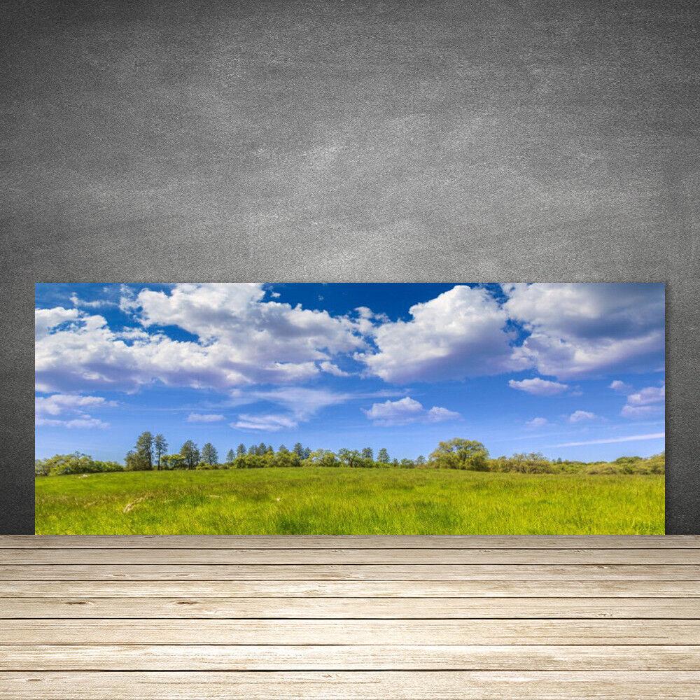 Crédence de cuisine en verre Panneau 125x50 Paysage Prairie Herbe
