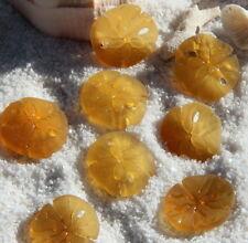 2 Sea Glass Sand Dollar Pendants 21 X 19 mm (DESERT GOLD) 2 PIECE