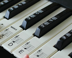 Keyboard or Piano Stickers up to 61 key keyboard for the black amp white keys - <span itemprop='availableAtOrFrom'>christchurch, Dorset, United Kingdom</span> - Keyboard or Piano Stickers up to 61 key keyboard for the black amp white keys - christchurch, Dorset, United Kingdom