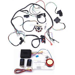 electrics atv quad wiring harness 150 200cc 250cc stator. Black Bedroom Furniture Sets. Home Design Ideas