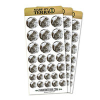 Winter Forest Tree Squirrel Removable Matte Sticker Sheets Set